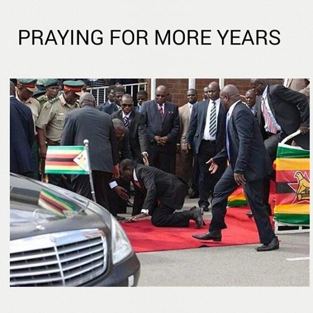 Mugabe 7