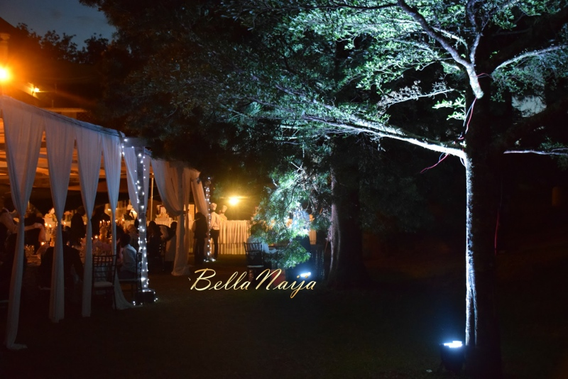 Susan & Alex's Parisian Themed Outdoor Kenyan Wedding | Infinite Planners | BellaNaija February 2015 010