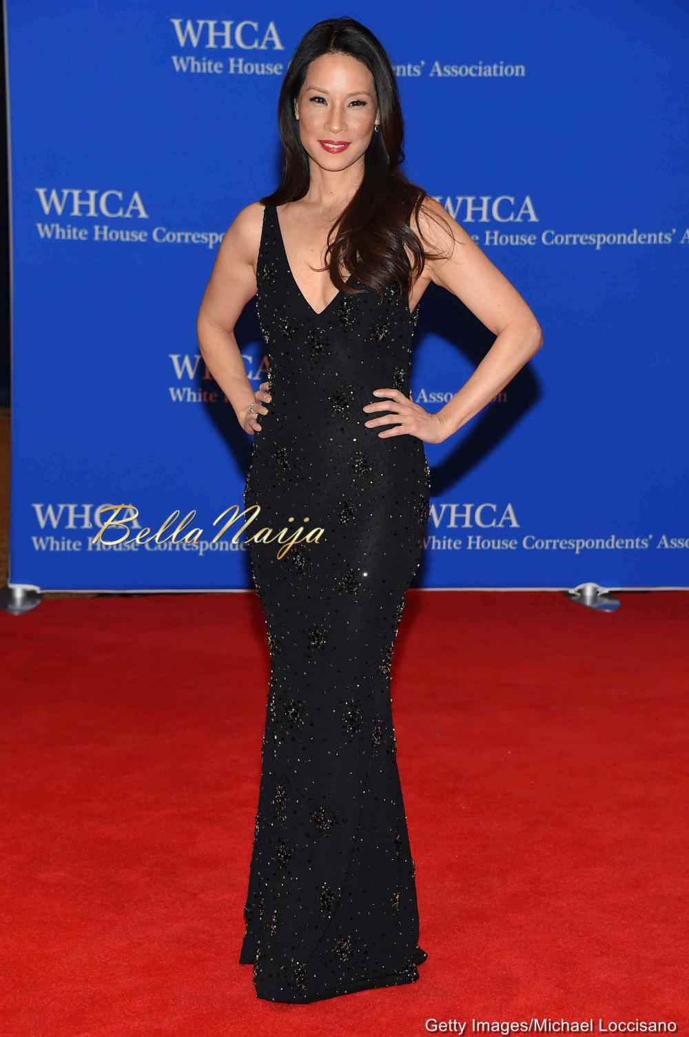 Buy House white correspondents association dinner pictures trends