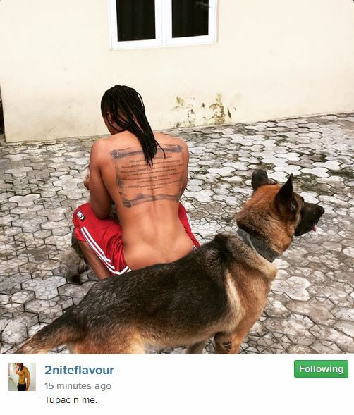 flavour and dog, tupac