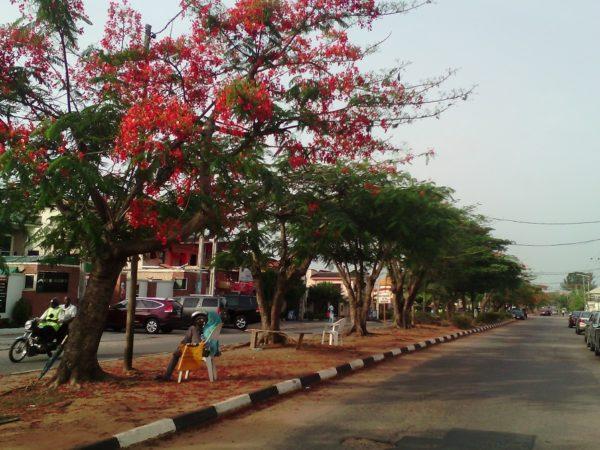 Magodo-Bashiru-Shittu (12)