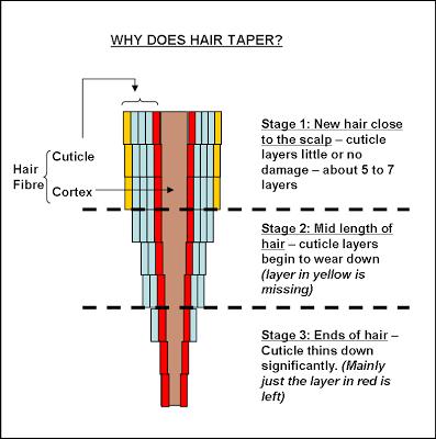 Natural Hair Pop Quiz - BellaNaija - May 2015001