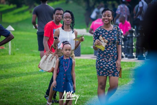 Delphino Entertainment Picnic - BellaNaija - July - 2015 - image014