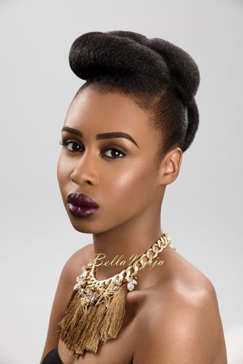 Dionne Smith Natural Hair Inspiration - Bellanaija - July2015005