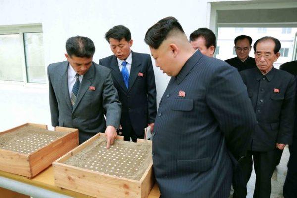 Kim-Jong-un2