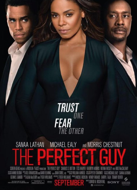 The Perfect Guy - BN Movies & TV
