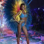 2015 Victoria's Secret Fashion Show  - BellaNaija - November2015005