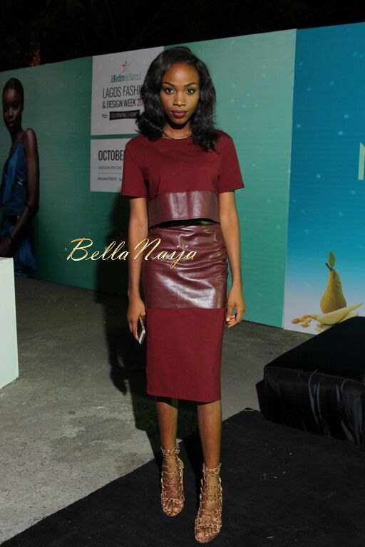 Heineken LFDW 2015 Red Carpet Day 4 - BellaNaija - October2015096