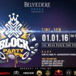 Belvedere Block Party 1st Jan 2016