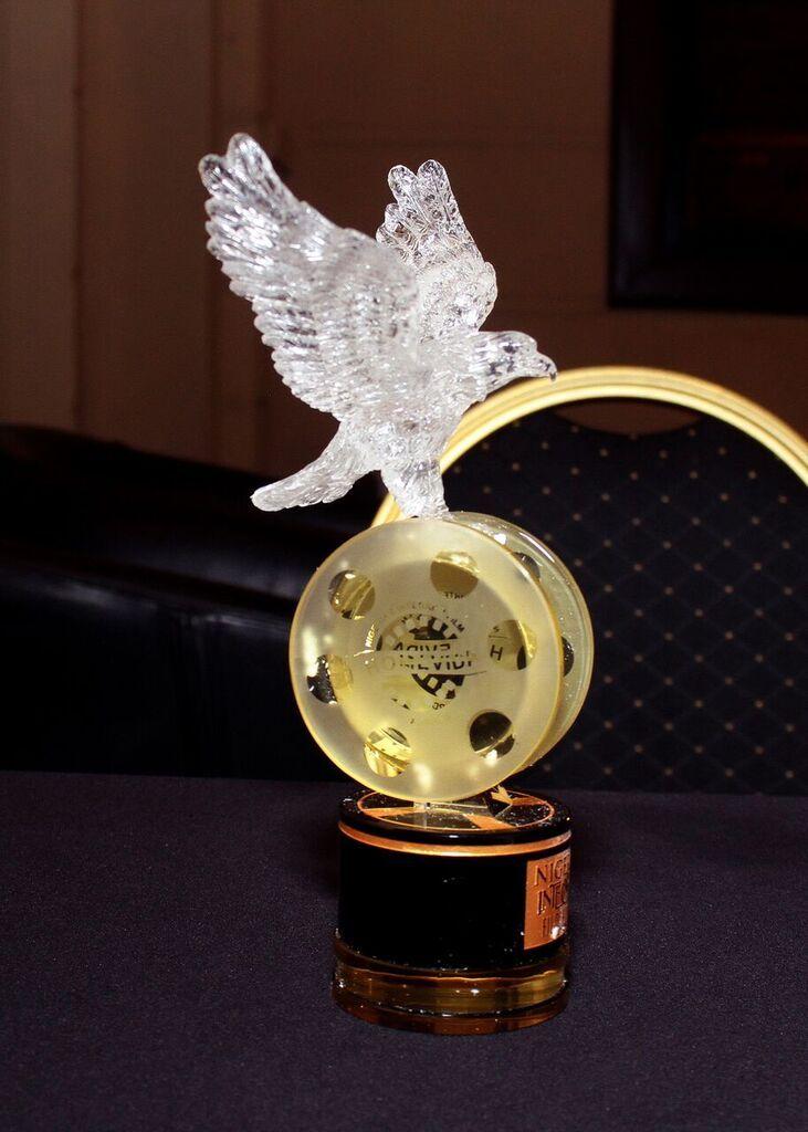 HomeVida Awards 2015 - BellaNaija - December2015086