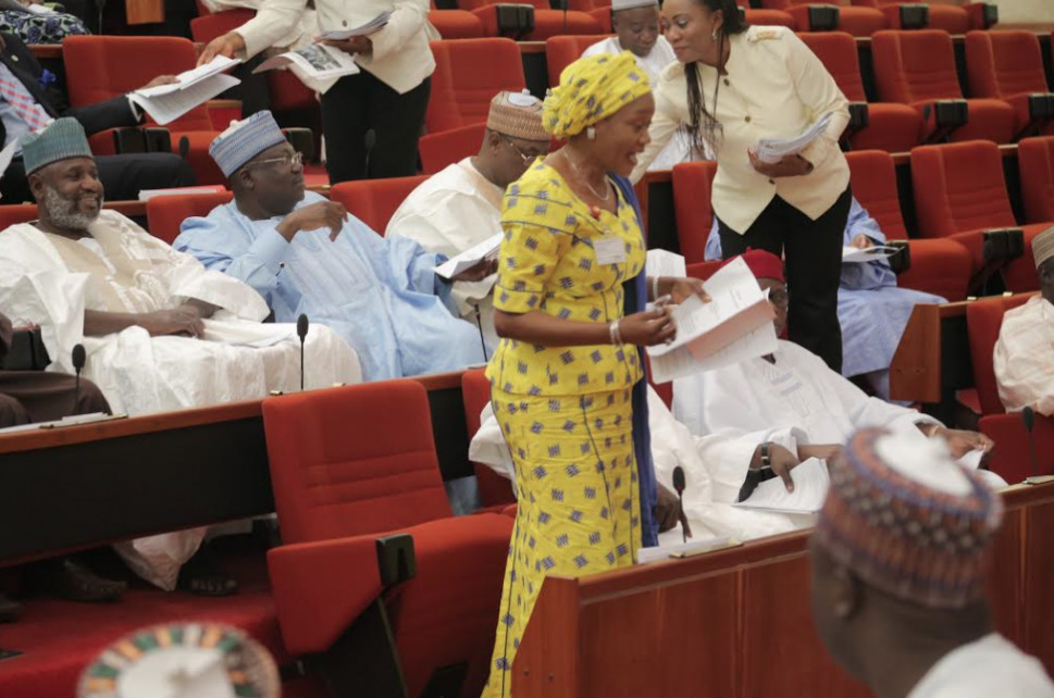 Image result for senator remi tinubu speaks at the senate