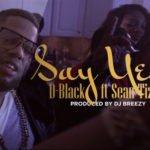 D-black featuring Sean Tizzle - Say Yes