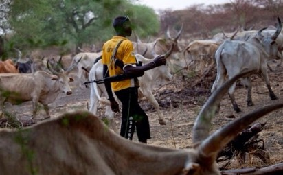 Fulani-herdsmen-