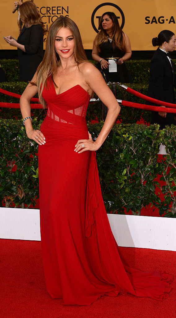 LOS ANGELES, CA - JANUARY 25: Actress Sofia Vergara attend the 21st Annual Screen Actors Guild Awards at The Shrine Auditorium on January 25, 2015 in Los Angeles, California. (Photo by C Flanigan/Getty Images)