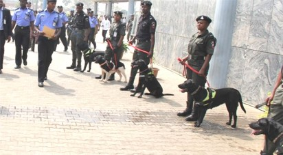 Sniffer-dogs-