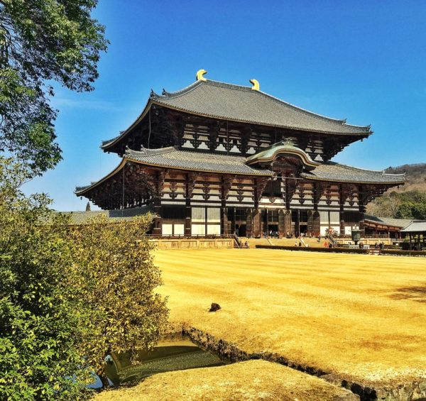 Todaji Temple - houses one of the biggest buddha statures