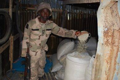 Army Operation Borno 10
