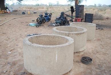 Army Operation Borno 11