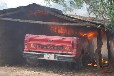 Army Operation Borno 7