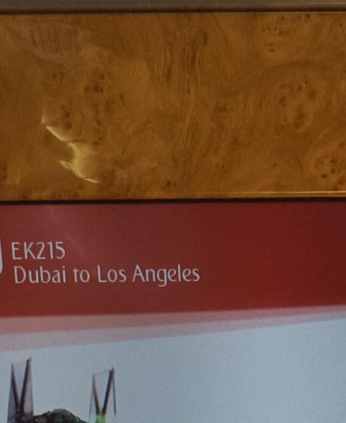 Flight to LAX