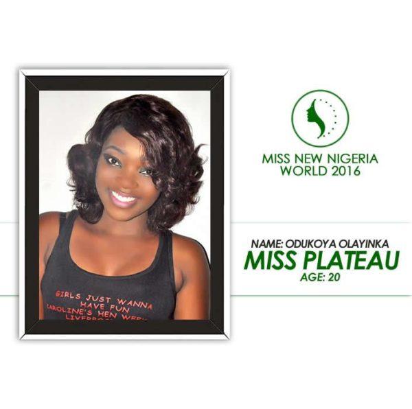 Miss New Nigeria World 2016 (2)