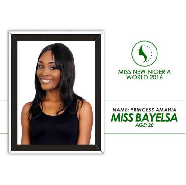 Miss New Nigeria World 2016 (8)