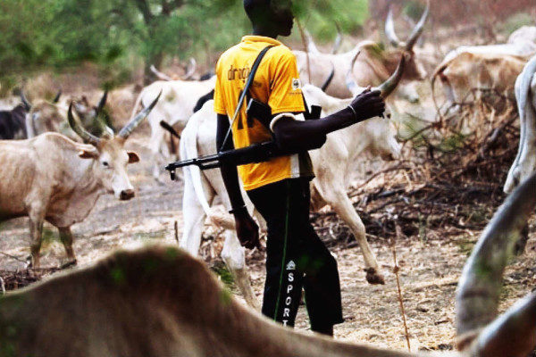 """Banning open grazing is an invitation to anarchy"" - Fulani Herdsmen - BellaNaija"