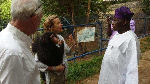 Obasanj-donates-chimpanzee-patience-to-pandrillus