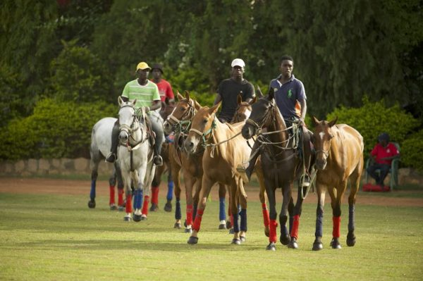 2016-Access-Bank-Polo-Tournament-June-2016-BellaNaija0007