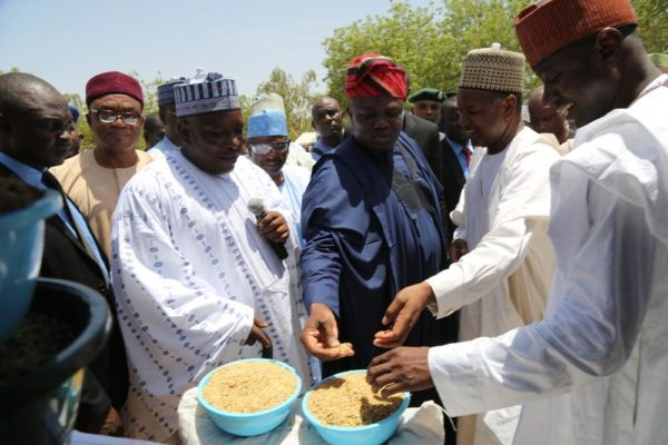Gov Ambode in Kebbi