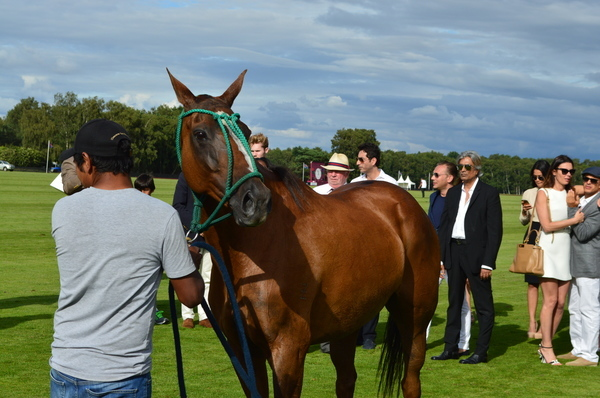 Access Bank Polo in UK - BN Events - 015