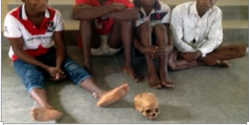Teenagers Arrested with Skull