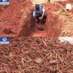 Arms Buried in Anambra