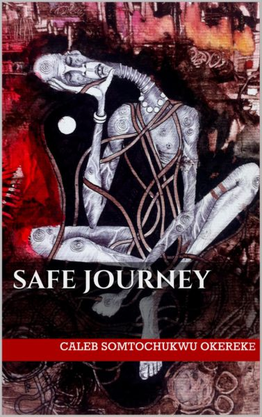 Safe Journey Book Cover