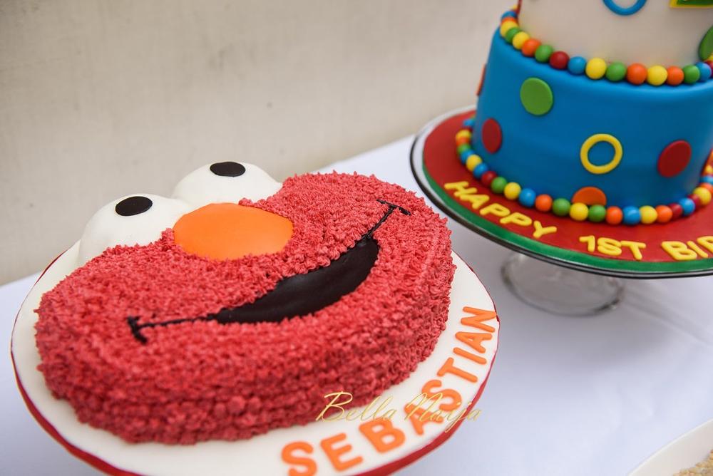 Sebastian's First Elmo play date party tireni bellanaijaTireni-4682016_