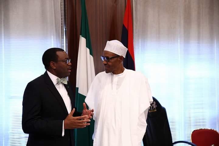 Dr. Akinwunmi Adesina and President Buhari