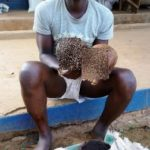 The Suspect, Oluwatosin Akorede