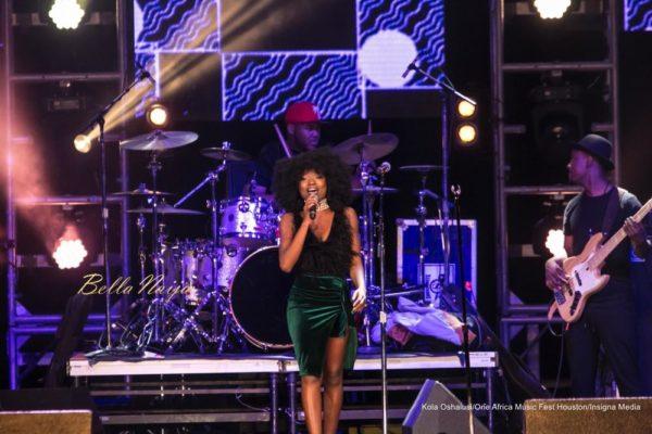 One-Africa-Music-Fest-October-2016-BellaNaija0011