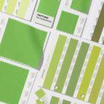 00-holding-greenery-pantone-color-of-the-year-bellanaija