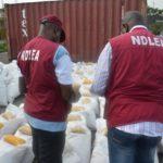 BellaNaija - NDLEA intercepts over 5000kg of Cannabis at Seme Border