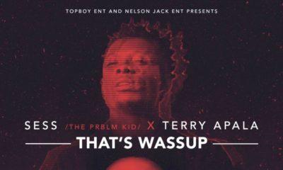 BellaNaija - New Music: Sess x Terry Apala - That's Wassup