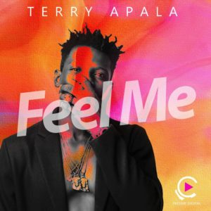 BellaNaija - New Music: Terry Apala - Feel Me