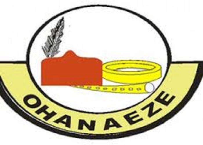 Ohaneze, Petition, UN
