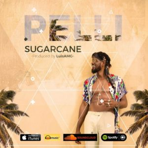 BellaNaija - New Music: Pelli - Sugarcane