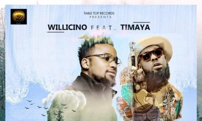 BellaNaija - New Music: Willicino feat. Timaya - Ayanda (Remix)