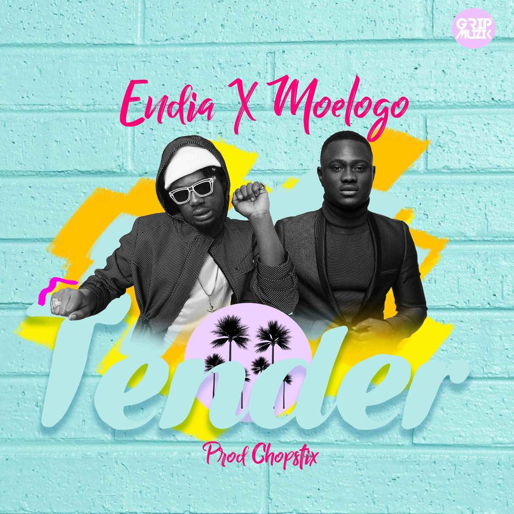 BellaNaija - New Music: Endia feat. Moelogo - Tender