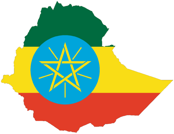 Ethiopian Government stops Foreigners adopting Vulnerable Kids