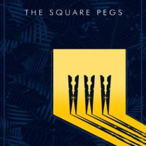 """#LiterallyWHatsHot: A Touch of The Didactic, And Much-Needed Positive Vibes – A Review of David Obasa's """"Square Pegs"""""""