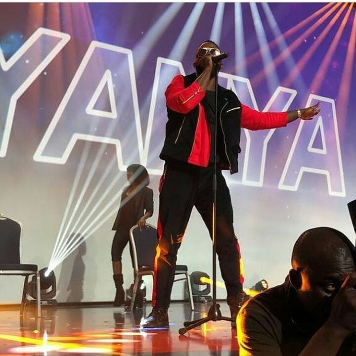 Davido, Wizkid, Big Shaq thrill fans last night at #RhythmUnplugged2017
