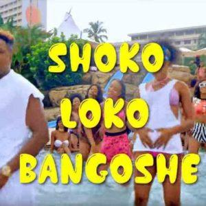 New Video: Jeff Akoh - Shokolokobangoshe